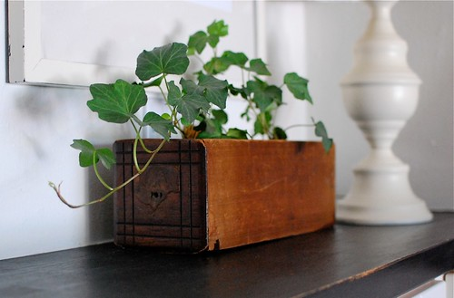 the vintage drawer i turned into a flower pot