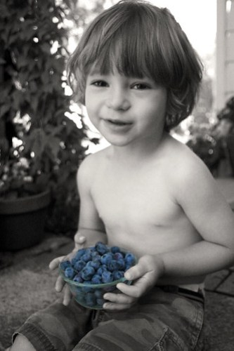 zekie_blueberries