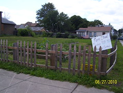 community garden at Conkey and Clifford