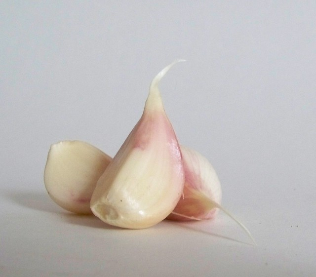 three cloves of fresh local green garlic