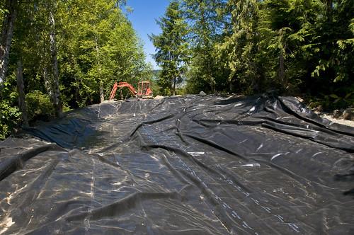 Future Manufactured Wetland