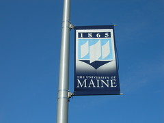 University of Maine Flag