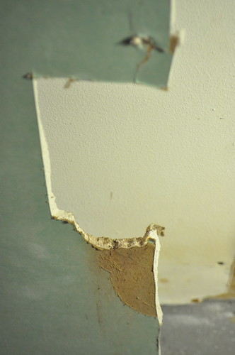 eaten drywall
