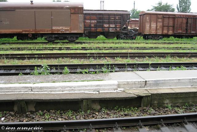 Trenuri-BL (15)