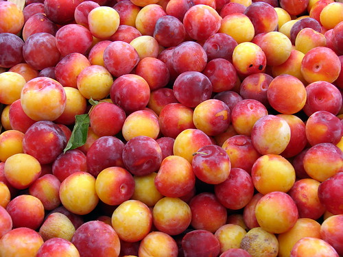 plum jumble
