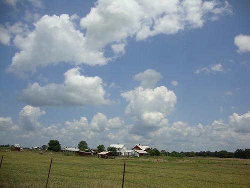 Amish Mississippi
