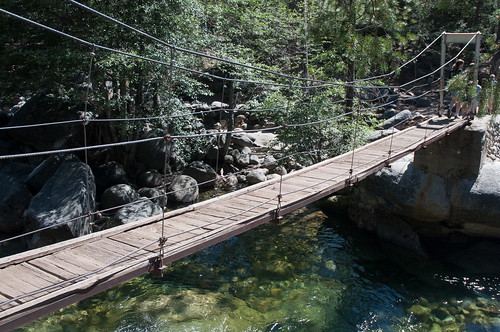 Swinging bridge fish