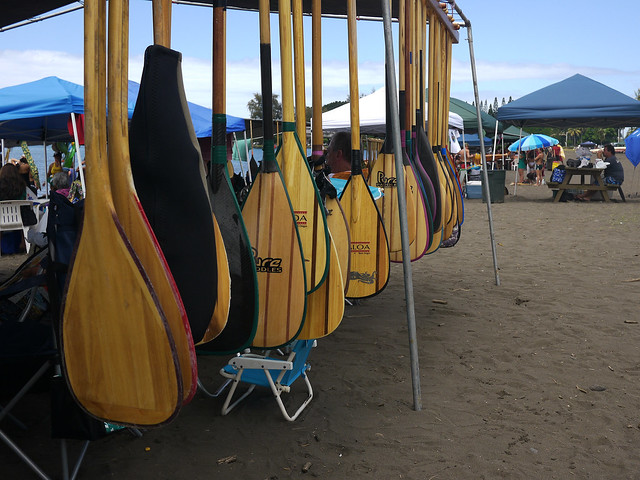 Outrigger Canoe Paddles, Hilo Bay Races