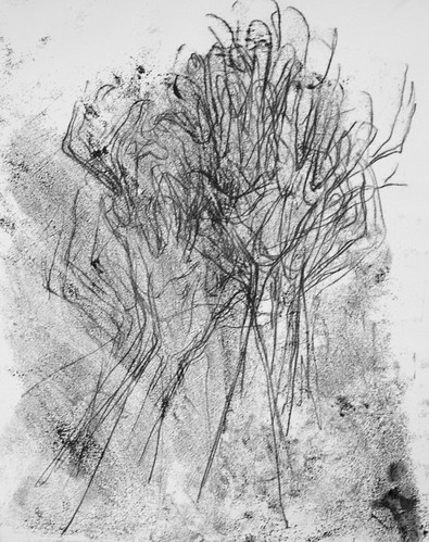 Monotype Drawing