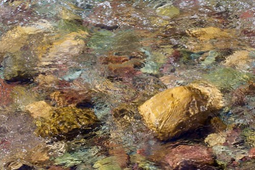 Stones in the river at Running Eagle Falls, Glacier National Park