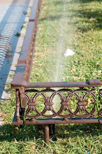 Regando los jardines de la Plaza de Cervantes (I)