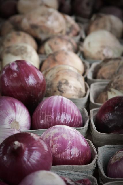 {222/365} onions