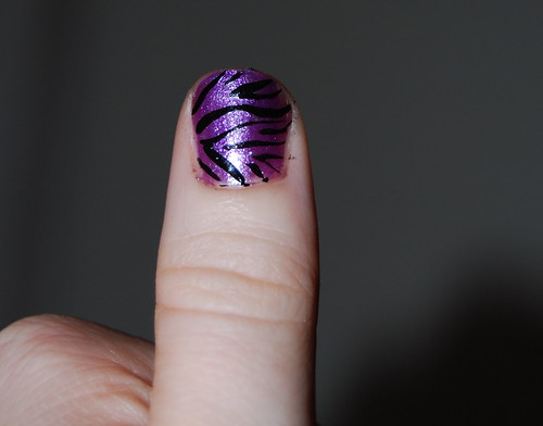 zebra nail detail