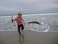 Running from the Seaweed Monster