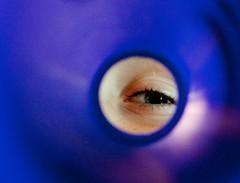 Shelby's Eye