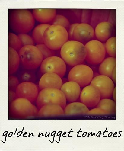 Vicki's Tomatoes