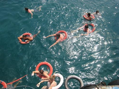 south china sea, swimming