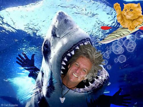 Sharky Paul