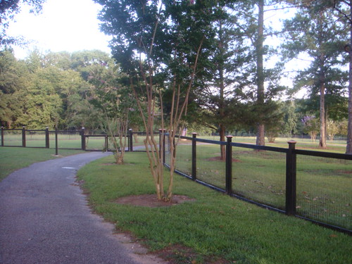 Gily's Fence