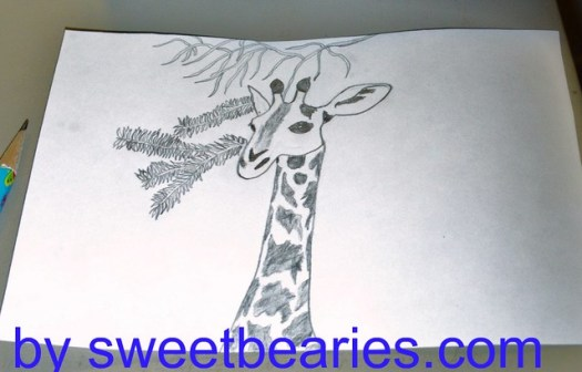 Giraffe Sketch: Part 2