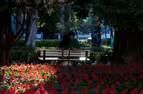 www.adrianojalmeida.wordpress.com