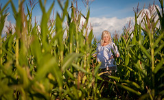 Prenatal: Corn Field & Barn