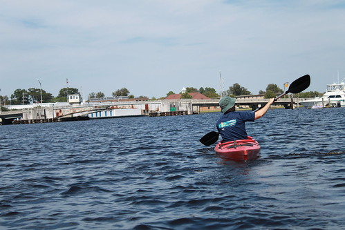 Kayaking - Pasquotank River - Ryan Paddles Near Elizabeth Road Bridge