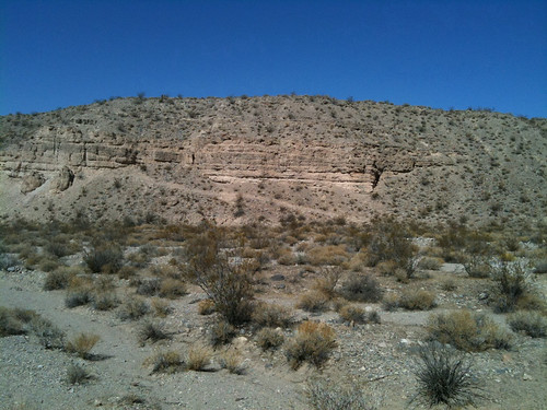 Coyote Springs trails
