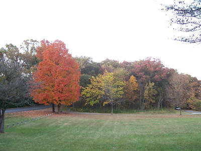 20101012_autumn_on_maple_lake1