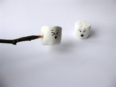 Marshmallow Nightmares!!