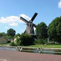 Windmill Surprise
