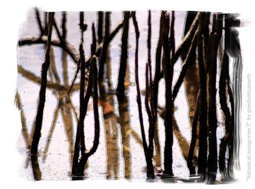 Botanical mangroves