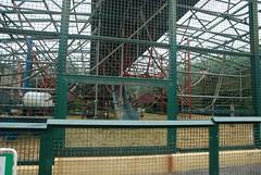 Gorilla Anlage im Howletts Wild Animal Park