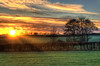 Good Morning Sunshine by Osgoldcross