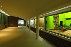 330 - 2017 07 01 - Oude siamangverblijven gerenoveerd voor kleine zoogdieren