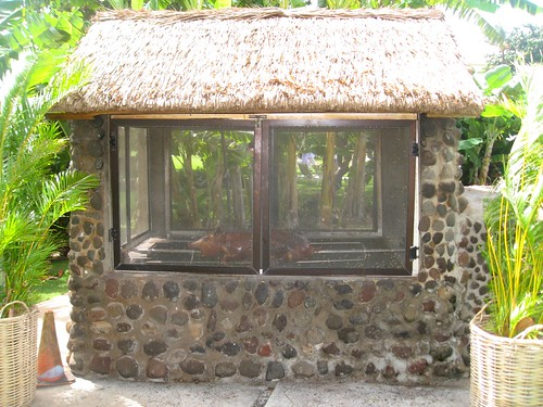pig roast hut at ka'anapali beach hotel