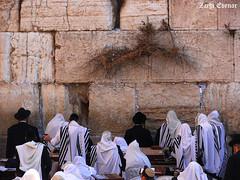 Jews pray in the Wailing Wall