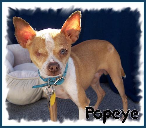 Popeye002