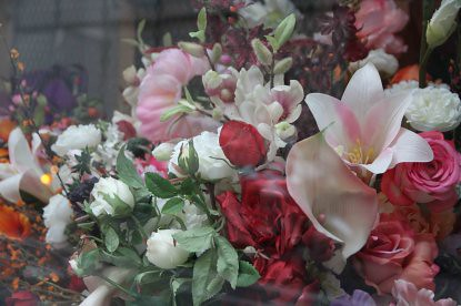 IMG_1714 Flores baja