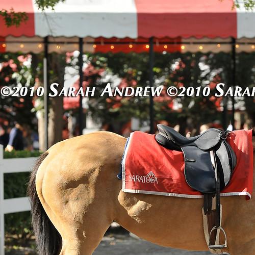 So very Saratoga