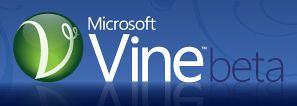 Microsoft Vine beta