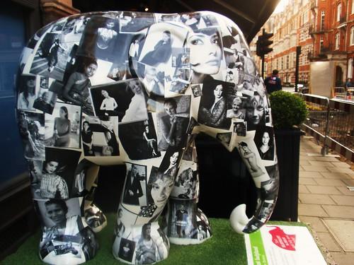Elephant Ladyland