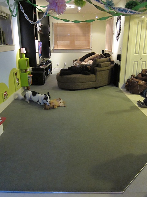 Clean Living Room w/Silly Dogs