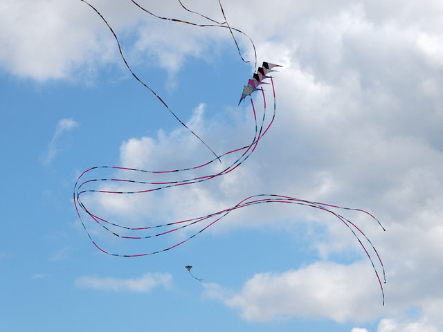 Eggerdon Hill Kite Festival 2010_5