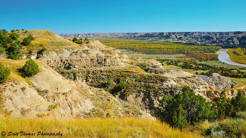 Little Missouri Bottomland in the North Unit of the Theodore Roosevelt National Park in North Dakota.