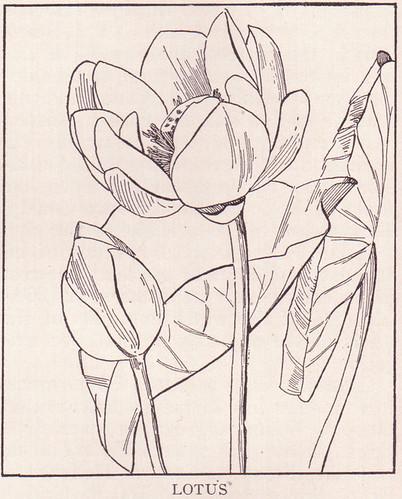 Lotus page 1698