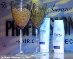 Fanny Serrano Professionals Protect/Anti Frizz Shampoo and Conditioner