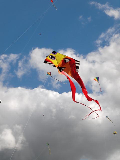Eggerdon Hill Kite Festival 2010_7