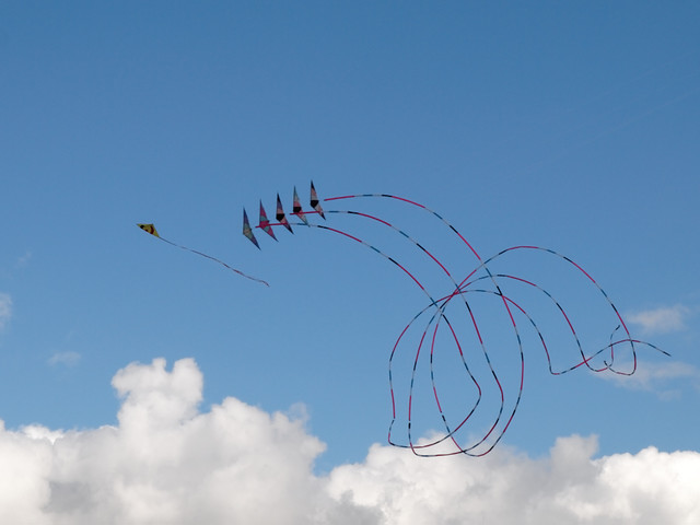 Eggerdon Hill Kite Festival 2010_6