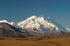 """Mt. McKinley """"Denali"""" elevation 20,3..."""